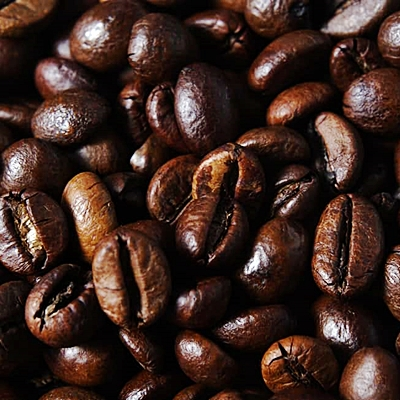 robusta coffe